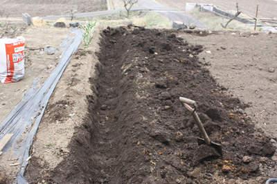 dug trench