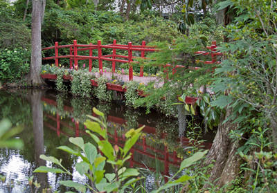 some common japanese garden elements include water rocks sand bridges bamboo moss water basins various decorations like lanterns and a handful of